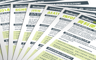 11 information sheets typeset in 28 languages, including: Amharic, Arabic, Cambodian, Chinese (Simplified and Traditional), Cree, Dari, Farsi, German, Greek, Hindi, Hungarian, Italian, Korean, Oji-Cree, Polish, Portuguese, Punjabi, Russian, Serbian, Somali, Spanish, Swahili, Tagalog, Tamil, Ukrainian, Urdu, and Vietnamese.