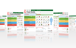 My Food Guide is an online tool that personalizes the information found in Canada's Food Guide. This was typeset in 13 languages, including Arabic, French, Chinese (Traditional and Simplified), Farsi, Korean, Russian, Punjabi, Spanish, Tagalog, Tamil, and Urdu.